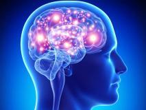 Hợp chất tự nhiên phòng ngừa bệnh suy giảm trí nhớ