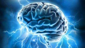 Oxy hóa do stress gây ảnh hưởng đến mô thần kinh
