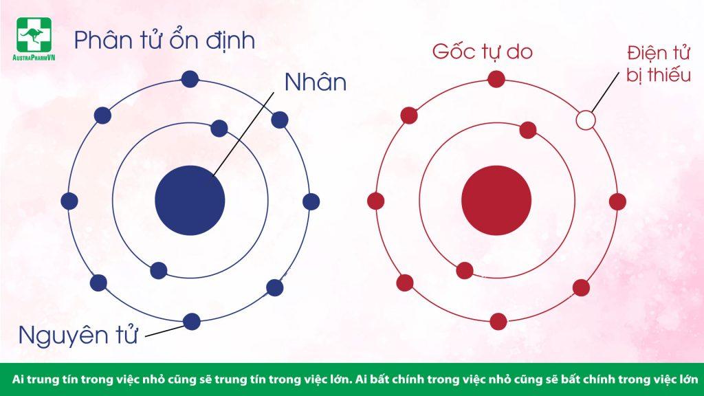 Hinh-2